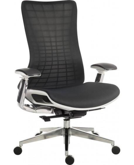Quantum Mesh Posture Chair