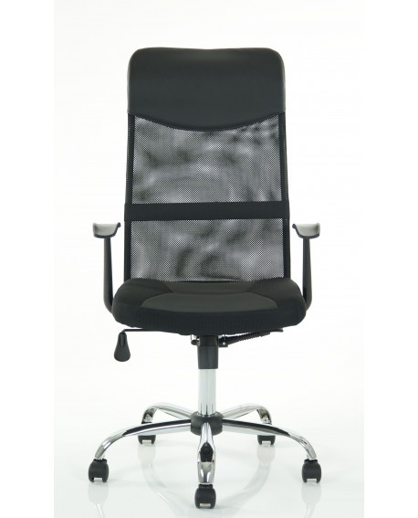 Marvellous Mesh Executive Chair